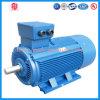 Motor eléctrico trifásico del motor eléctrico de 2500 revoluciones por minuto 5.5 kilovatios