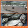 De elektrische Schaal die van Vissen Machine clfp-500 verwijdert