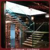 Madera cubierta y escalera de cristal (DMS-9017)