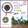 250W-1000W Programmable Vector Controller Brushless Electric Bicycle Motor Wheel mit CER Approval