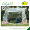 Serre chaude de PE d'Onlylife BSCI mini de plante verte de jardin respectueux de l'environnement de couverture