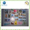 Aimant de réfrigérateur, respectueux de l'environnement, approprié au voyage et à la décoration à la maison (JP-FM007)