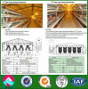 Auto Feeding Systemの中国Supplier Steel Structure Chicken House