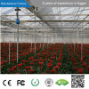 mit 8 Years Manufacturer Supply High Efficency Industrial Humidifier Greenhouse Humidifier für Greenhouse mit CER