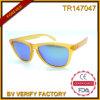 2015 Products novo Tr Frame com os óculos de sol de Polaroid Lens (TR14047)