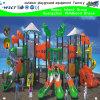Descontando alta qualidade Playground Equipment (HK-50040)