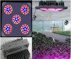 36W LED Grow Light (JJ-WP-GL36W-S-36*1W)