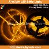 Nastro flessibile dell'indicatore luminoso di colore giallo SMD LED (HY-SMD3528-120-Y)