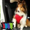 Perro diseño de seguridad del asiento de coche de plomo malla para mascotas Arnés Cinturón
