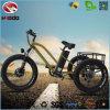 3 batería de litio gorda eléctrica del triciclo de la playa del neumático de la bici 500W de la rueda