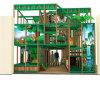 Спортивная площадка опирающийся на определённую тему детей джунглей крытая