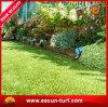 Het beste Monofilament van Materialen Kunstmatige Gras van de Tuin van het Gras