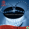 LED imperméable à l'eau 12V 100m / Roll LED Decoratiove Rope Strip Light