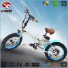 En15194 250W faltbarer elektrischer Fahrrad-fetter Gummireifen-faltendes Fahrrad