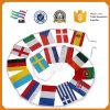 Bandiera nazionale su ordinazione di grande promozione del commercio all'ingrosso del mondo in Cina