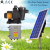 72V-90V gelijkstroom Solar Powered Centrifugal Swimming Pool Pump met Brushless gelijkstroom Motor