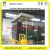 Generator van het Biogas van het Gas van de Levering van de Fabrikant van China de Professionele