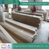 Paulownia Log avec Highquality Paulownia Wood Timber