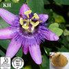 Flavonoïdes normales et organiques de 100% de passion de fleur d'extrait 3% ~5%
