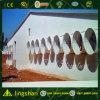 Полуфабрикат ферма цыпленка стальной структуры и дом цыплятины