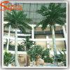 De beste Kokospalm van de Glasvezel van de Verkoop Binnen Decoratieve Plastic Kunstmatige