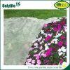 [أنلليف] منافس من الوزن الخفيف زهرة حماية حديقة تغذية