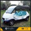 Elektrisches Golf-Auto-besichtigenauto