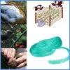Оптовый завод защищает Nylon плетение сада птицы