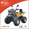 Lianmei ATV 110cc badine ATV