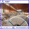 Горячая окунутая гальванизированная сталь Coil/Roll (DX51D)