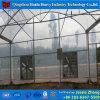 農業の商業野菜によって使用されるプラスチックフィルムの温室