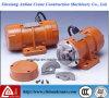 Motor elétrico da vibração da força ajustável