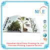 Stampa a finestra del libro, stampa del libro del bordo per l'apprendimento dei bambini