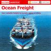 Transporte do oceano de FCL&LCL de China no mundo inteiro (transporte do oceano)