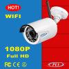 1080P appareil photo numérique sans fil d'IP de WiFi de balle de la vision nocturne HD