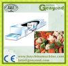 Type ligne congelée de courroie de production alimentaire