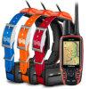 Garmin Astro 320ハンチング束GPSの束を追跡しているT5犬