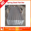 Constructeurs en acier de ressort plat en Chine