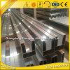 Perfil del aluminio de la casa del jardín de la fuente de la fábrica