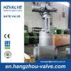 Válvula de porta de alta pressão elétrica do vapor