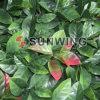 Artficial 주황색 잎 산울타리 담
