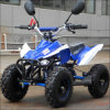 Professional chinois Gas Powered 49cc Mini ATV Quads Bike pour Children