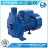 Bomba Effluent do CPM para a agua potável com velocidade 2850rpm