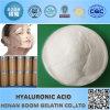 L'acide hyaluronique vendu à chaud en santé et en médecine