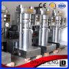 presse de pétrole hydraulique des graines de sésame 6yz-260