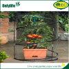 Onlylifeのポップアップ小さいプラント庭の温室植物カバー