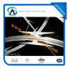 アコーディオン式かみそりの有刺鉄線(ISO9001)