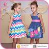 최신 Summer Flower Denim Girl Dress, Bonnybilly의 Baby Frocks