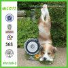 최신 판매인 사랑스러운 시리즈 강아지 Handstand 스포트라이트 (NF11255-3)