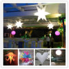 LED LightのセリウムRoHS PassとのDecoration Inflatable Starsの広告